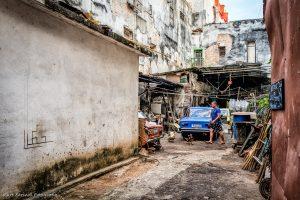 Habana backyard