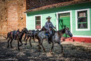 Trinidad Three horse Cowboy